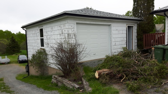 garage remodel before